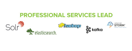 SSA PROFESSIONAL SERVICES LEAD