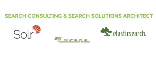 SEARCH CONSULTING & SEARCH SOLUTIONS ARCHITECT